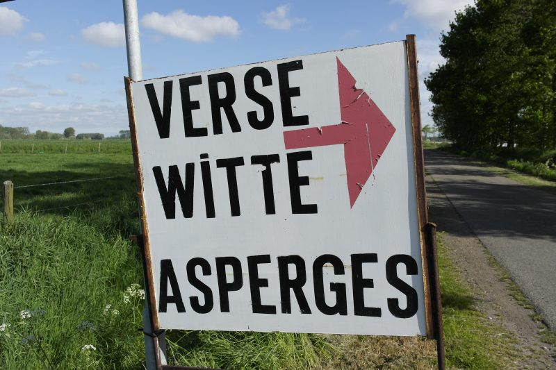 Verse witte asperges